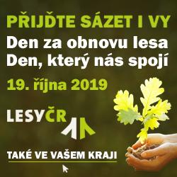 LČR - sázíme lesy nove generace