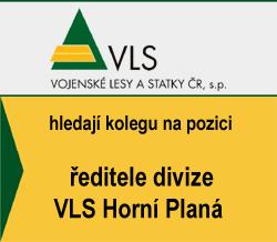 VLS - ředitel divize VLS Horní Planá