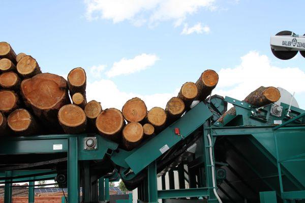 PGRLF bude nově podporovat také vlastníky lesů a zpracovatele dřeva