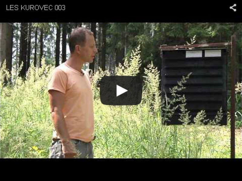 Jak pečovat o les - kůrovec