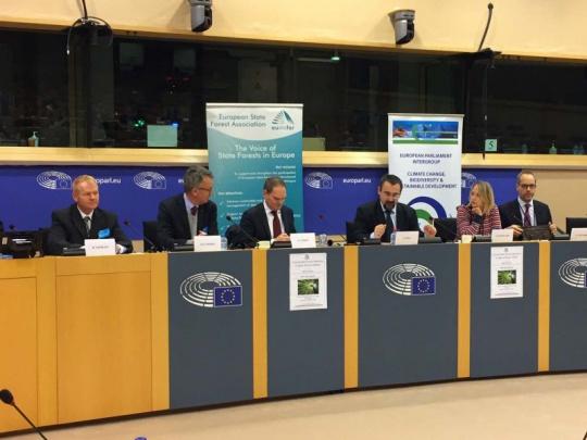 Daniel Szórád vystoupil v Evropském parlamentu