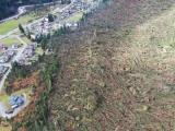 Škody po orkánu Vaia zničily v Itálii téměř 20 milionů kubíků dříví