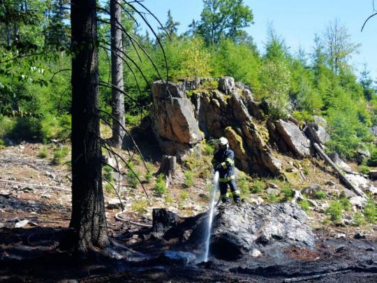 Lesníci a meteorologové upozorňují na zvýšené riziko požárů