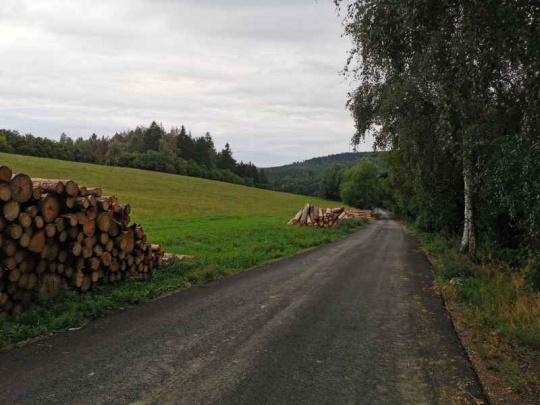MZe stanovilo podmínky pro dočasné skládkování dříví na zemědělské půdě