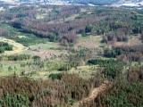 Katastrofa v českých lesích na leteckých snímcích