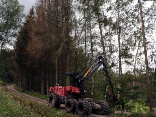 Lesnické firmy žádají změny smluv s Lesy ČR