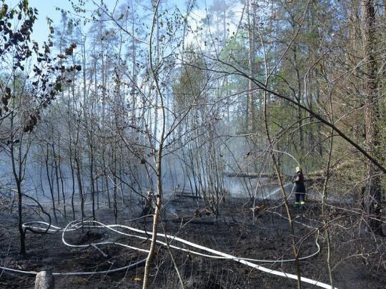 O Velikonocích opět vzplály požáry lesů po celé republice