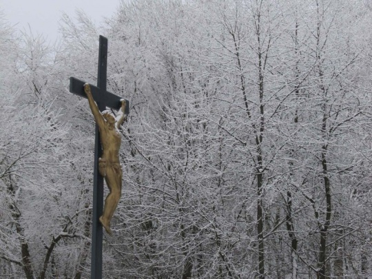 Lesy ČR vydaly církvím 102 000 ha