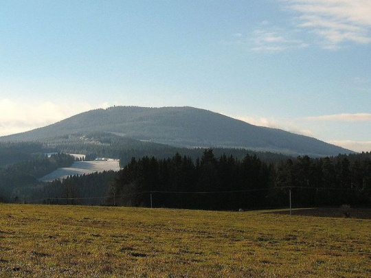 Lesy ČR dostaly výjimku ke kůrovcové těžbě v Boubínském pralese