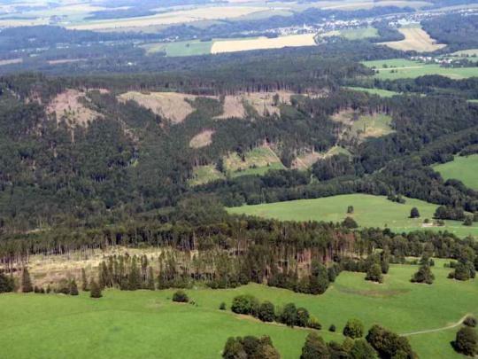 MZe aktualizovalo červenou zónu lesů zasažených kůrovcem