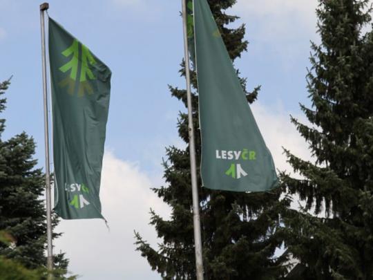 Akciové společnosti ucházející se o zakázky Lesů ČR budou muset mít zaknihované akcie