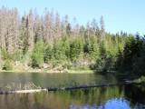 Lesníci diskutovali s ochránci přírody o velkoplošných bezzásahových územích