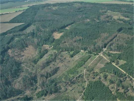 Výskyt lesních škodlivých faktorů v Česku v roce 2019