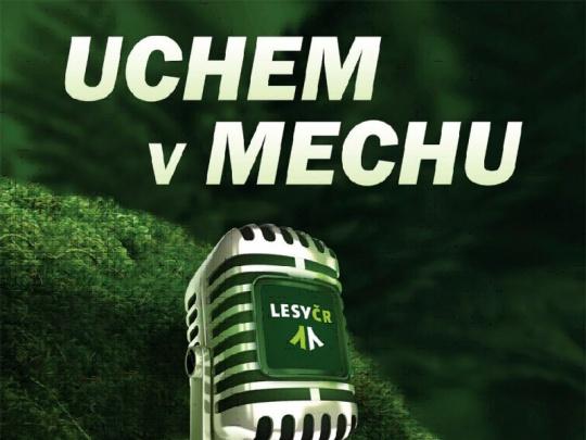 Lesy ČR zahajují podcastový kanál Uchem v mechu