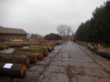 Dražba obtížně dostupných dubových sortimentů