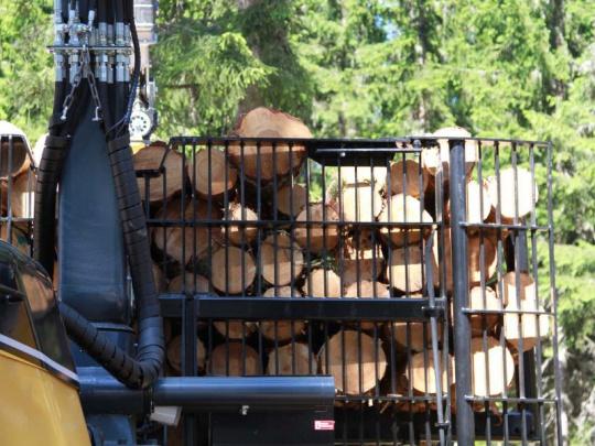 Lesnické firmy hodlají ukončit 76 % smluv komplexních a těžebních zakázek