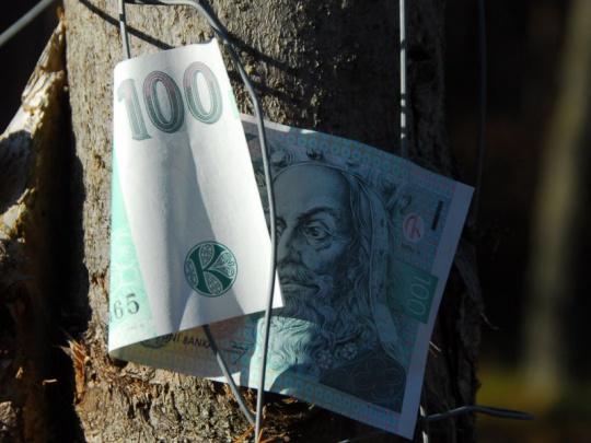 Vláda o dva týdny odložila debatu o dotacích pro vlastníky lesa