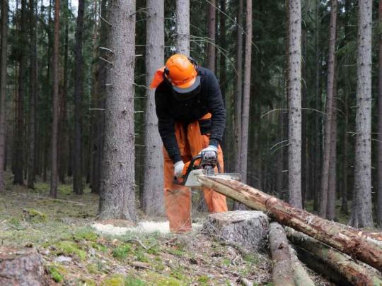 Na ošetřovné mají nárok i živnostníci v zemědělství a lesnictví