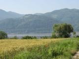 Lesy ČR zvažují koupi lesů v Rumunsku za miliardu