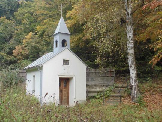 Jak budou církve hospodařit v restituovaných lesích?