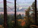 Minimální rozsah kalamit, církevní restituce i příznivé ceny dříví – rok 2014 pohledem vlastníků lesů